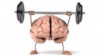 Четыре упражнения, чтобы не потерять к старости трезвый ум и ясную память